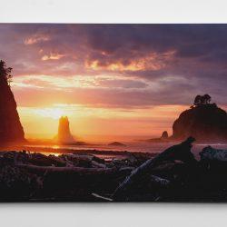 Mockup_A_NorCal_Sunset_eb73ba49-d6a4-419b-8ee3-22919f233c3c